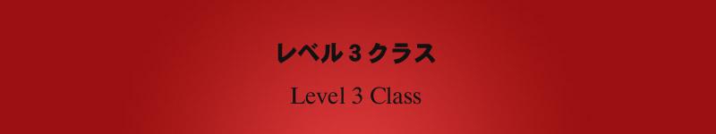 レベル3クラス アドヴァンスクラス